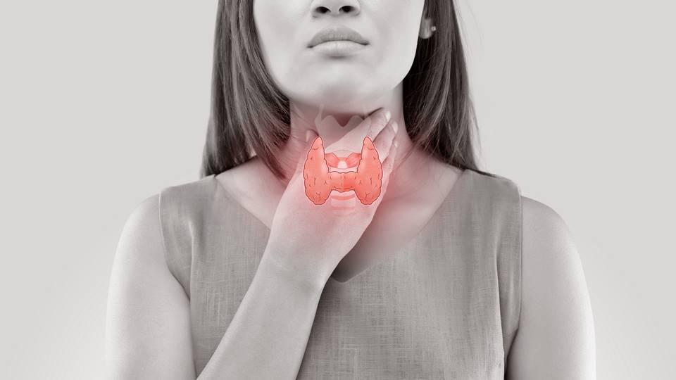Használ-e a CBD pajzsmirigy betegségek esetén?